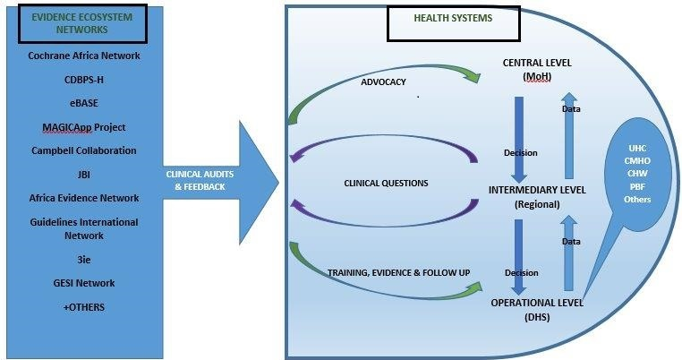 Incorporating Evidence into Health Systems in LMIC with Clinical Audits and Feedback:  A Tool for Health System Strengthening.